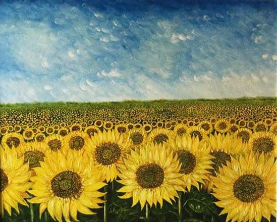 Toscana: sole e girasoli - Maestro Roberto Bernabini